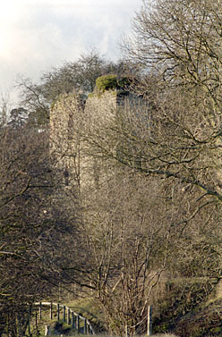 Detail of Wigmore Castle